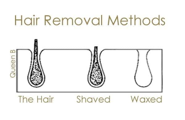 Shaving versus waxing